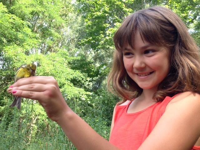 Noves activitats d'educació ambiental per escoles i instituts