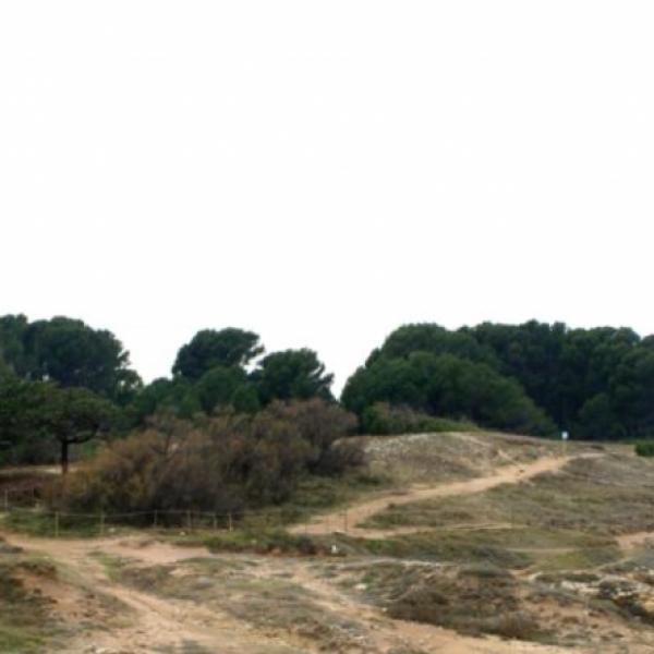 Restauració d'espais naturals